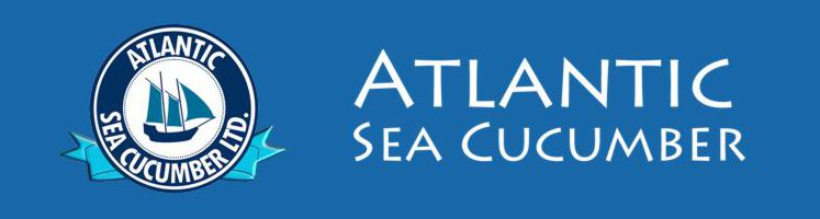 Atlantic Sea Cucumber Logo H light blue 747x200